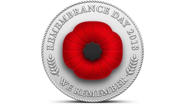 RemembranceDayPoppy2018